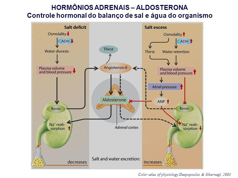 HORMÔNIOS ADRENAIS – ALDOSTERONA Controle hormonal do balanço de sal e água do organismo Color atlas of physiology/Despopoulos & Sibernagl, 2003