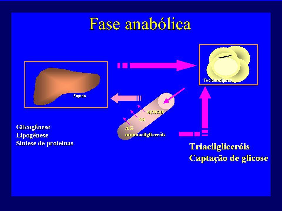Veja animações online: http://www.interactivephysiology.com/login/endodemo/systems/buildframes.html?endocrine/response/01http://www.interactivephysiology.com/login/endodemo/systems/buildframes.html?endocrine/response/01
