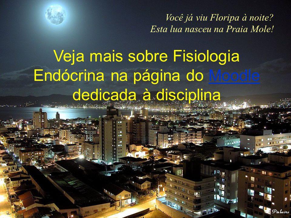 Você já viu Floripa à noite? Esta lua nasceu na Praia Mole! Veja mais sobre Fisiologia Endócrina na página do Moodle dedicada à disciplinaMoodle