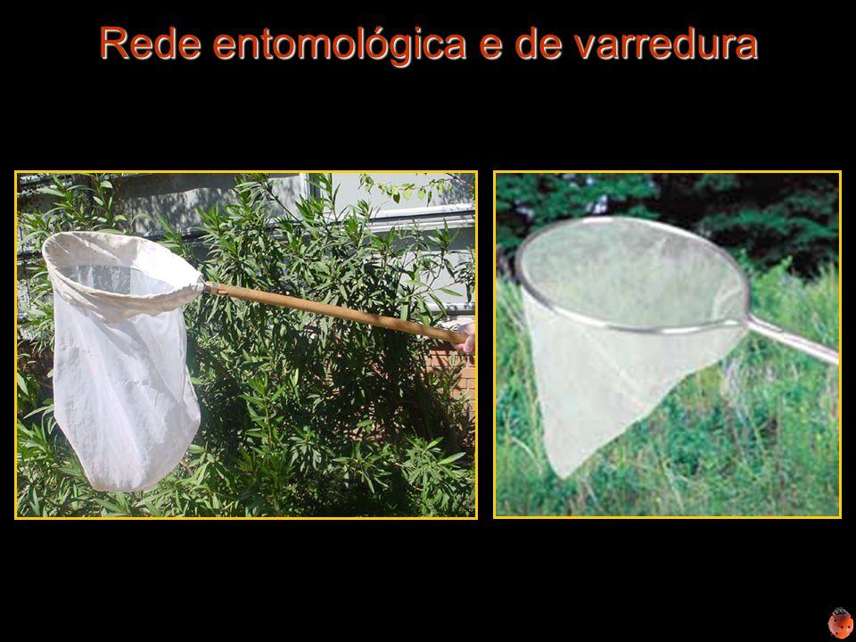 Rede entomológica e de varredura Rede entomológica e de varredura