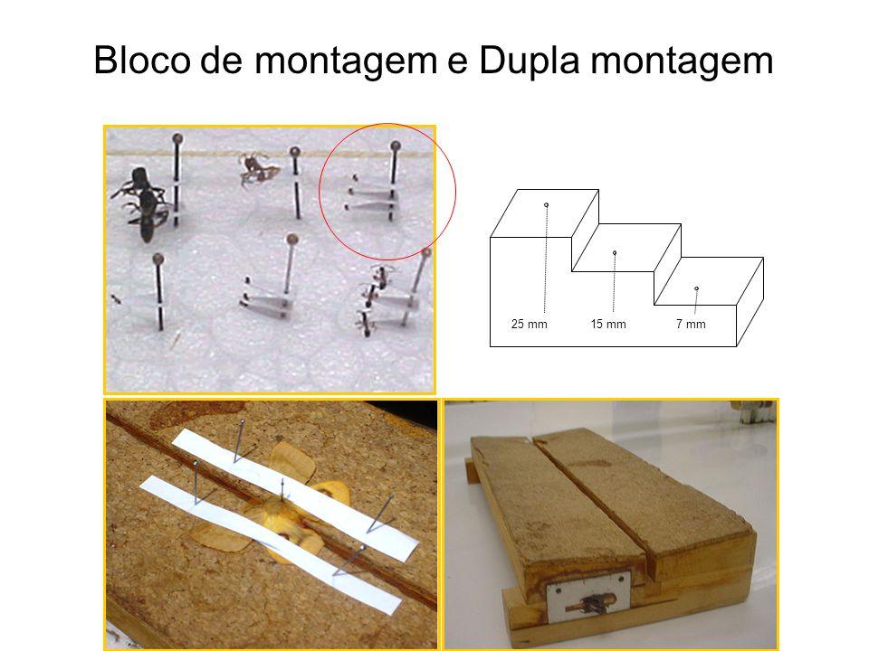 Bloco de montagem e Dupla montagem 7 mm25 mm15 mm