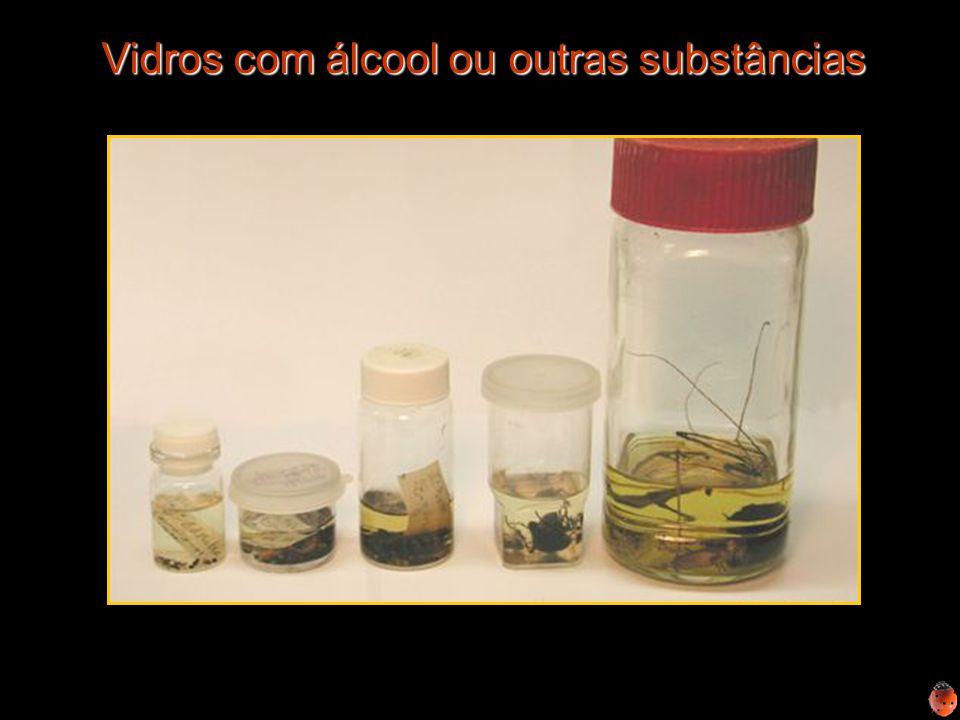 Vidros com álcool ou outras substâncias