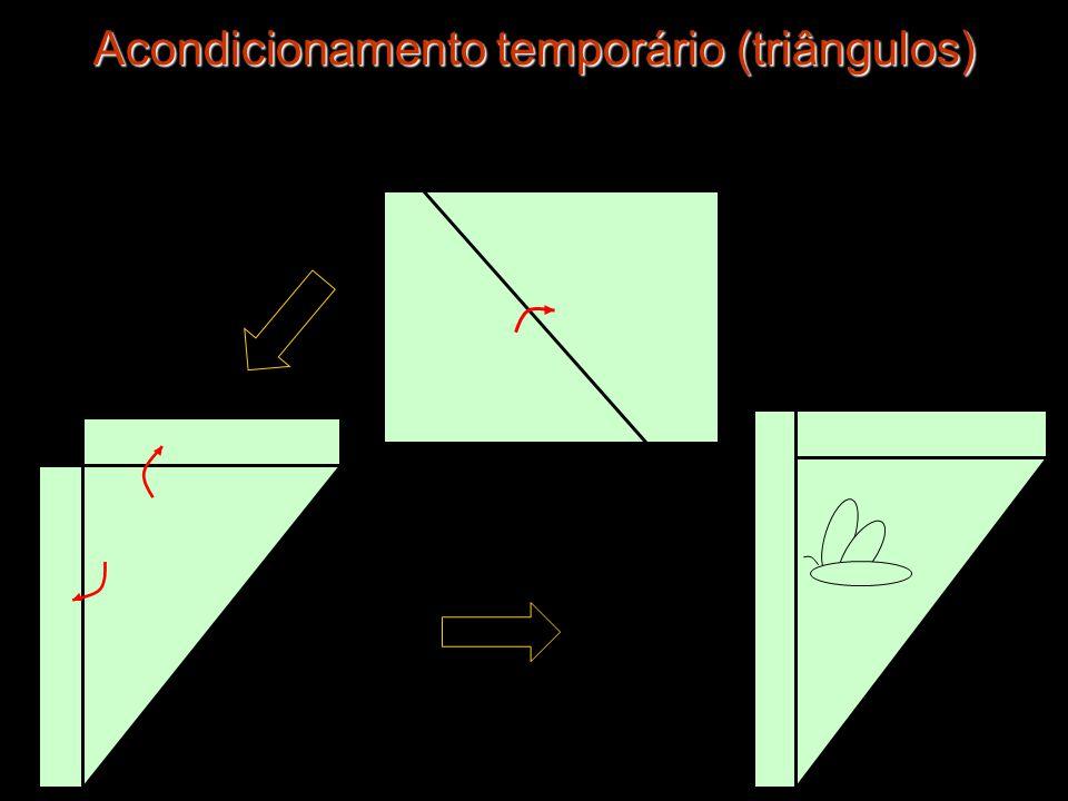 Acondicionamento temporário (triângulos) Acondicionamento temporário (triângulos)