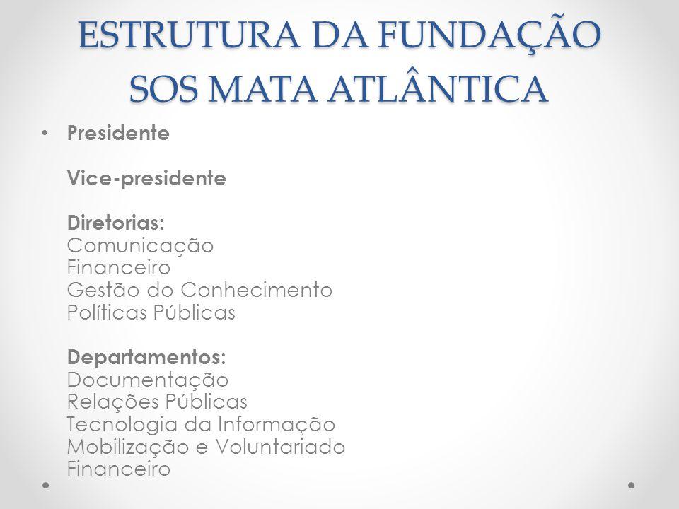 ESTRUTURA DA FUNDAÇÃO SOS MATA ATLÂNTICA Presidente Vice-presidente Diretorias: Comunicação Financeiro Gestão do Conhecimento Políticas Públicas Depar