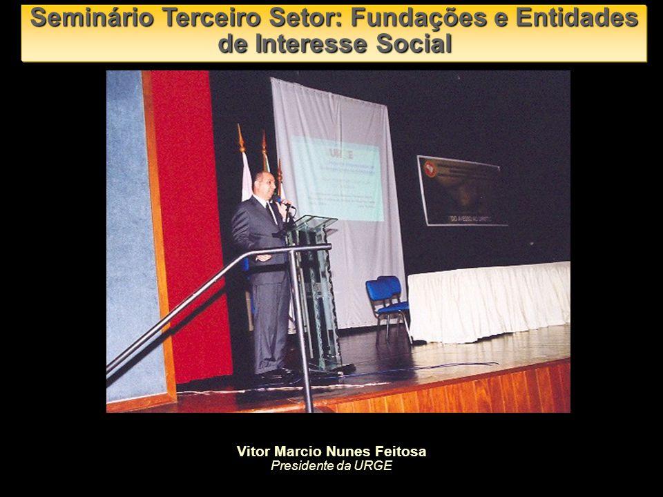 Seminário Terceiro Setor: Fundações e Entidades de Interesse Social Luiz Carlos Merege Professor e Coordenador do Centro de Estudos do Terceiro Setor da FVG-SP