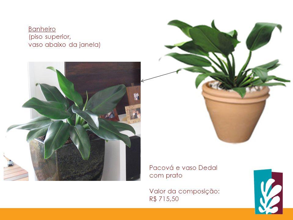 Pacová e vaso Dedal com prato Valor da composição: R$ 715,50 Banheiro (piso superior, vaso abaixo da janela)