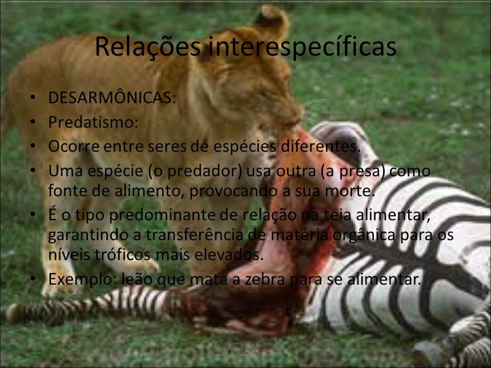 Relações interespecíficas DESARMÔNICAS: Predatismo: Ocorre entre seres de espécies diferentes.