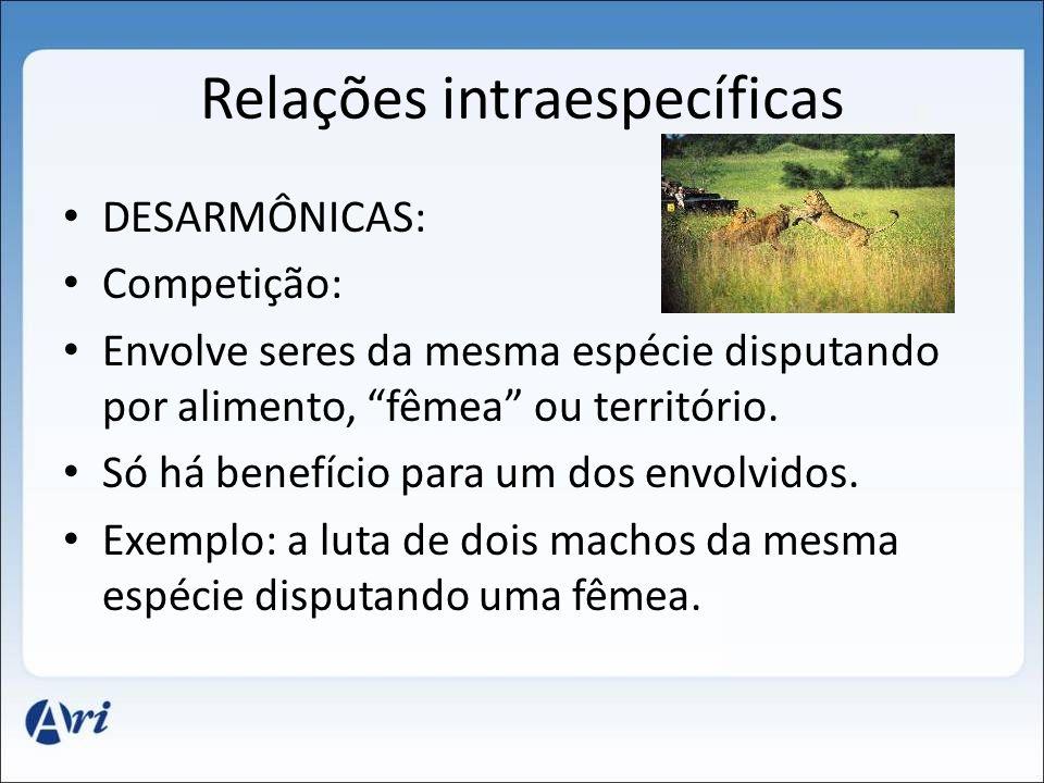 Relações intraespecíficas DESARMÔNICAS: Competição: Envolve seres da mesma espécie disputando por alimento, fêmea ou território.