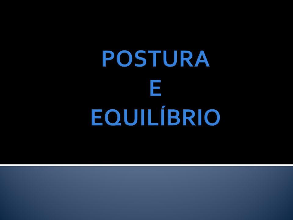  Treinamento de força;  Treinamento proprioceptivo;  Adaptação ambiental;  Adaptação de aparelhos de auxílio da marcha;  Treino de estratégias posturais;  Reabilitação vestibular.