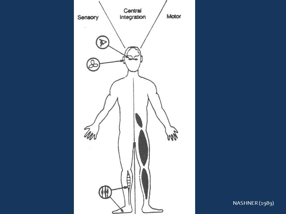 ALVO FIXO: Paciente sentado, segurar um alvo na distância do comprimento do braço em sua frente, e mover sua cabeça primeiro de um lado para o outro, depois para cima e para baixo mantendo o alvo focalizado todo o tempo e aumentando aos poucos a velocidade e as repetições conforme a tolerância.