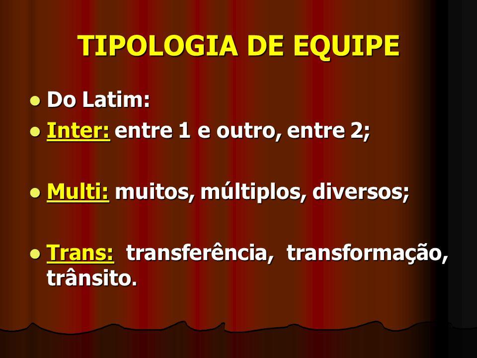TIPOLOGIA DE EQUIPE Do Latim: Do Latim: Inter: entre 1 e outro, entre 2; Inter: entre 1 e outro, entre 2; Multi: muitos, múltiplos, diversos; Multi: m