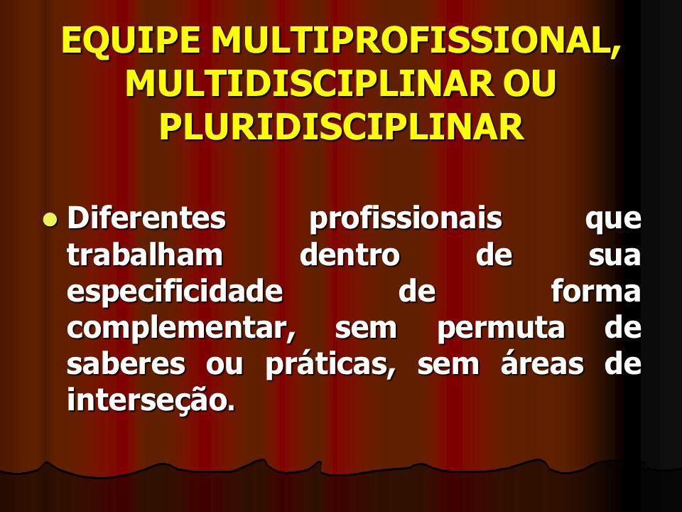 EQUIPE MULTIPROFISSIONAL, MULTIDISCIPLINAR OU PLURIDISCIPLINAR Diferentes profissionais que trabalham dentro de sua especificidade de forma complement