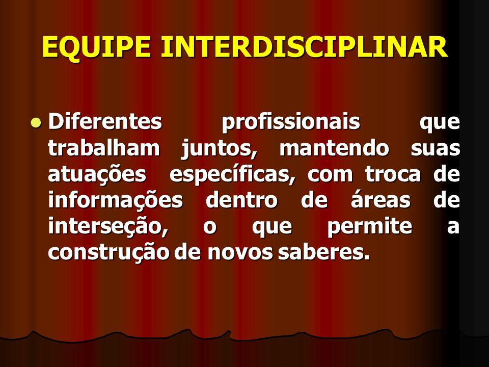 EQUIPE INTERDISCIPLINAR Diferentes profissionais que trabalham juntos, mantendo suas atuações específicas, com troca de informações dentro de áreas de