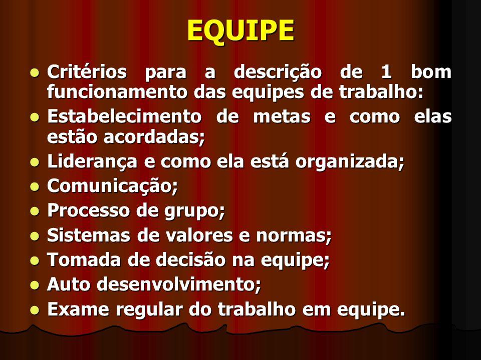 EQUIPE Características da equipe de sucesso: Características da equipe de sucesso: Objetivos comuns; Objetivos comuns; Clara definição de papéis; Clara definição de papéis; Suporte e engajamento; Suporte e engajamento; Respeito; Respeito; Comunicação; Comunicação; Competência e habilidades; Competência e habilidades; Aptidão dos membros da equipe para funcionar como UNIDADE e não como grupo de indivíduos.