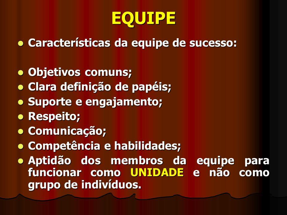 EQUIPE Características da equipe de sucesso: Características da equipe de sucesso: Objetivos comuns; Objetivos comuns; Clara definição de papéis; Clar