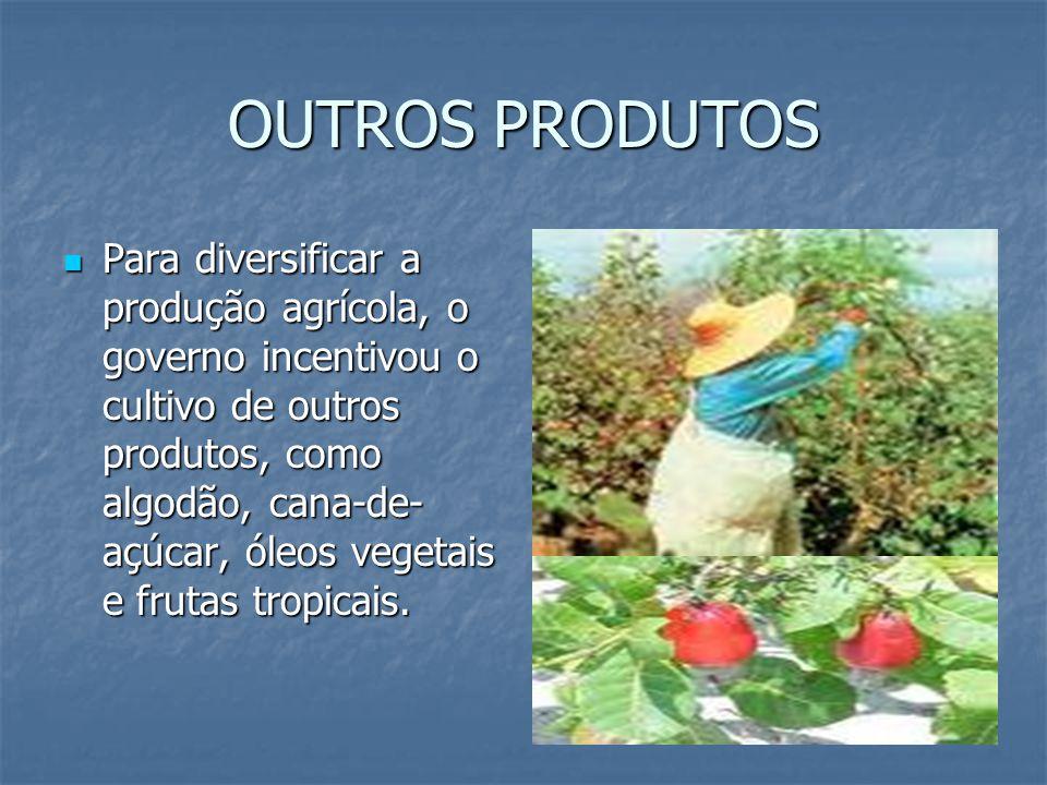 OUTROS PRODUTOS Para diversificar a produção agrícola, o governo incentivou o cultivo de outros produtos, como algodão, cana-de- açúcar, óleos vegetais e frutas tropicais.