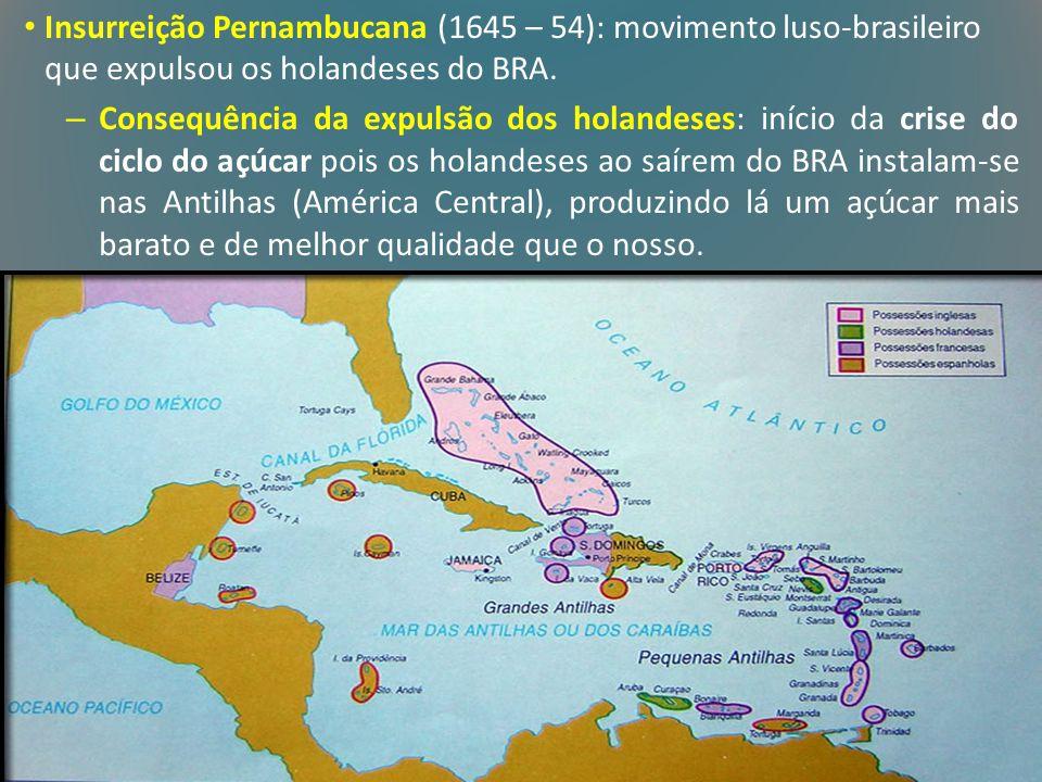 Insurreição Pernambucana (1645 – 54): movimento luso-brasileiro que expulsou os holandeses do BRA. – Consequência da expulsão dos holandeses: início d