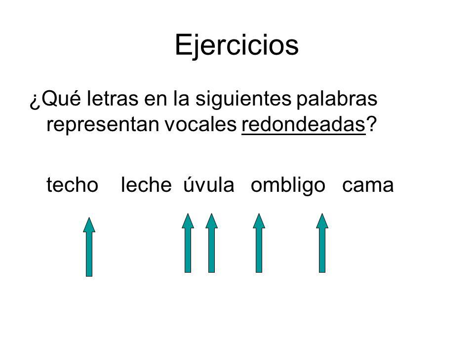 Ejercicios ¿Qué letras en la siguientes palabras representan vocales redondeadas? techo leche úvula ombligo cama