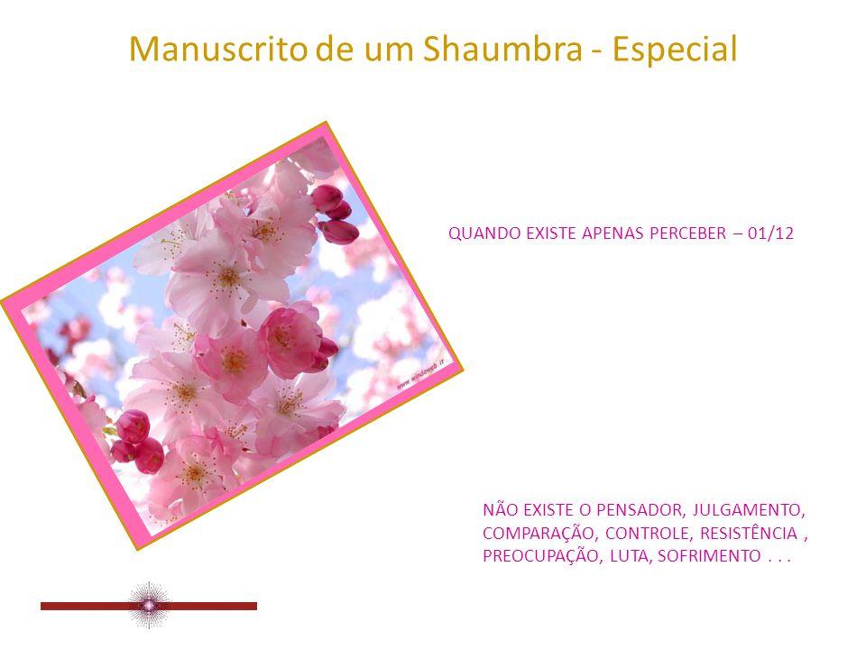 Manuscrito de um Shaumbra - Especial QUANDO EXISTE APENAS PERCEBER EXTRAÍDO DO SITE: www.manuscritoshaumbra.com ABR/09