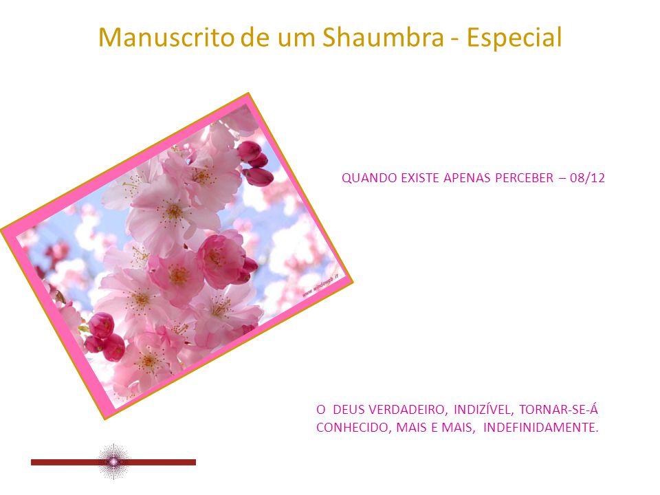 Manuscrito de um Shaumbra - Especial QUANDO EXISTE APENAS PERCEBER – 07/12 TORNA-SE POSSÍVEL A VIVÊNCIA MULTIDIMENSIONAL.