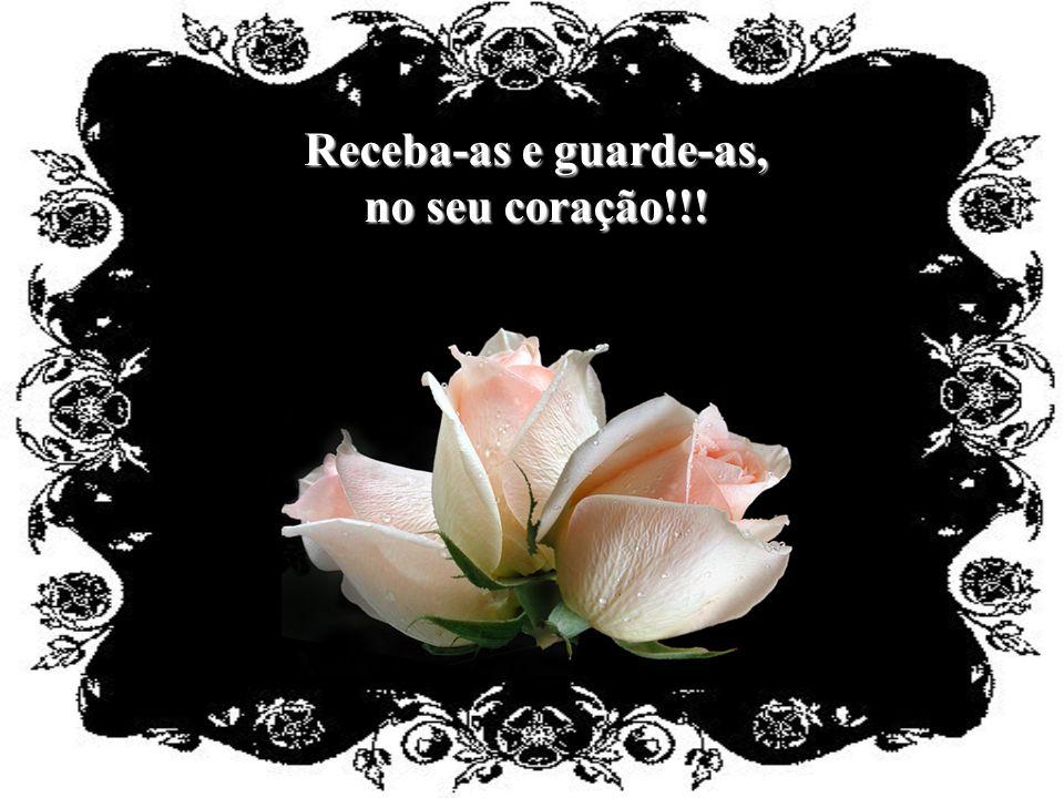 Que estas rosas possam levar à você... as minhas palavras; e a minha vibração positiva!!!