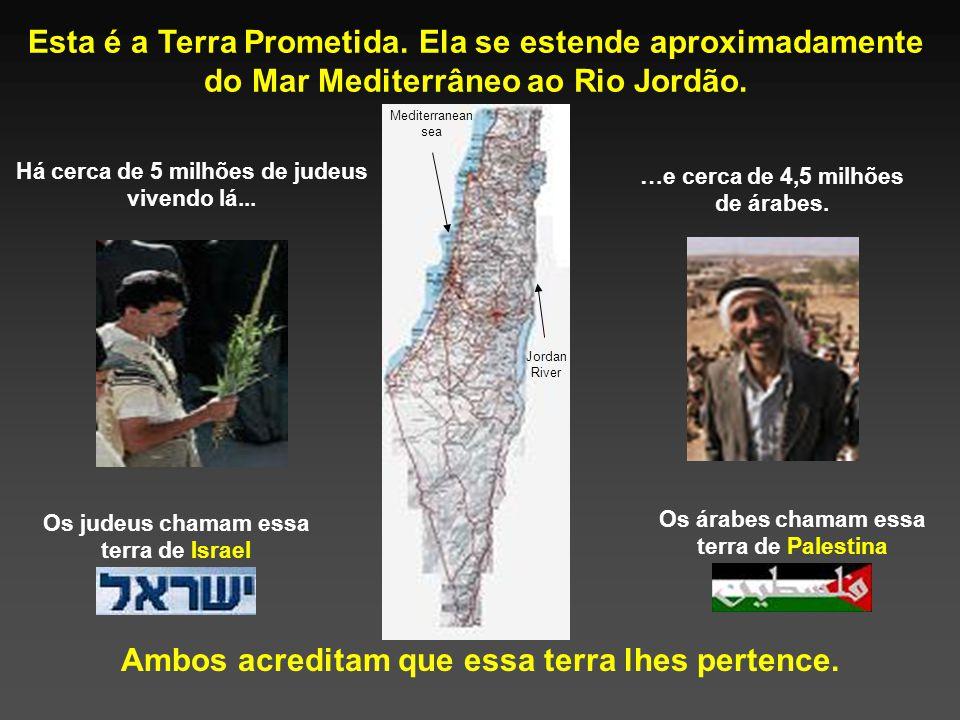Compartilhando a Terra Prometida Uma Tentativa de Análise Equilibrada do Conflito Israelense-Palestino
