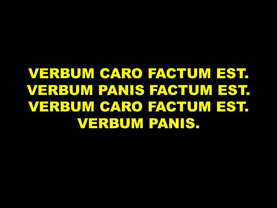 VERBUM CARO FACTUM EST. VERBUM PANIS FACTUM EST. VERBUM CARO FACTUM EST. VERBUM PANIS.