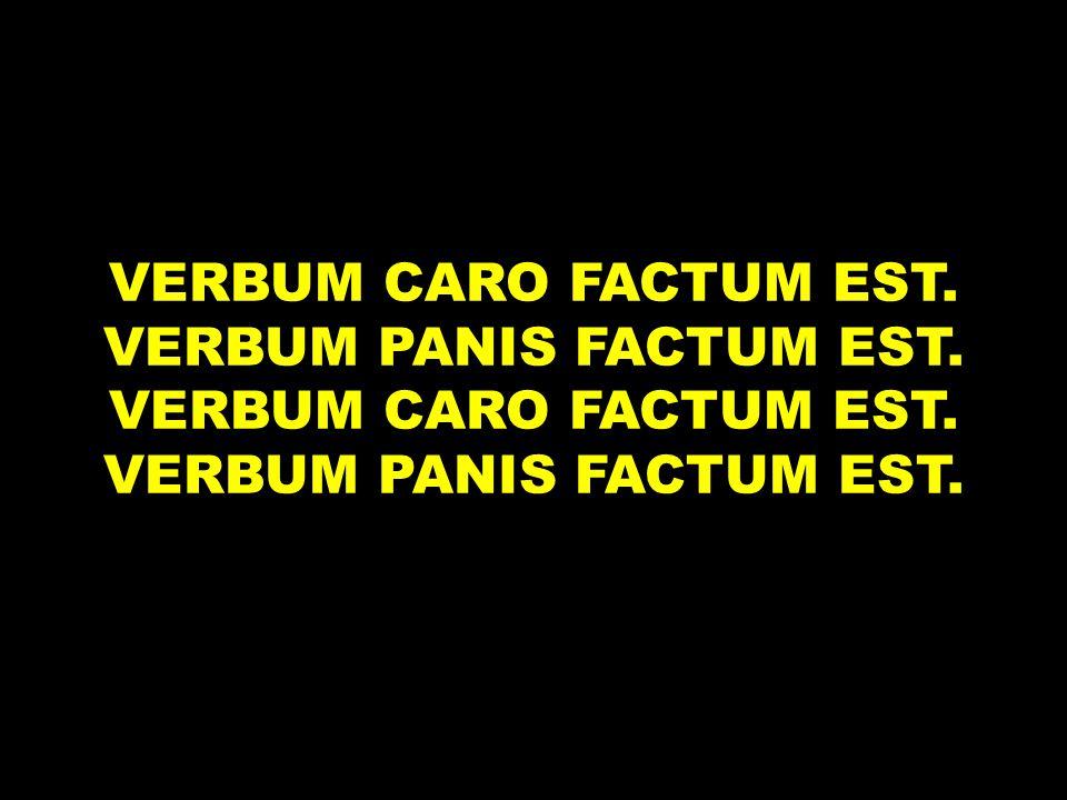 VERBUM CARO FACTUM EST. VERBUM PANIS FACTUM EST.