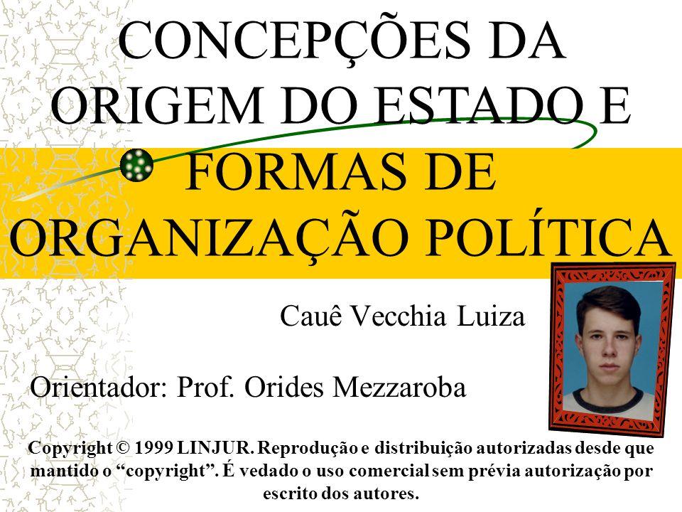 """Cauê Vecchia Luiza Orientador: Prof. Orides Mezzaroba Copyright © 1999 LINJUR. Reprodução e distribuição autorizadas desde que mantido o """"copyright""""."""