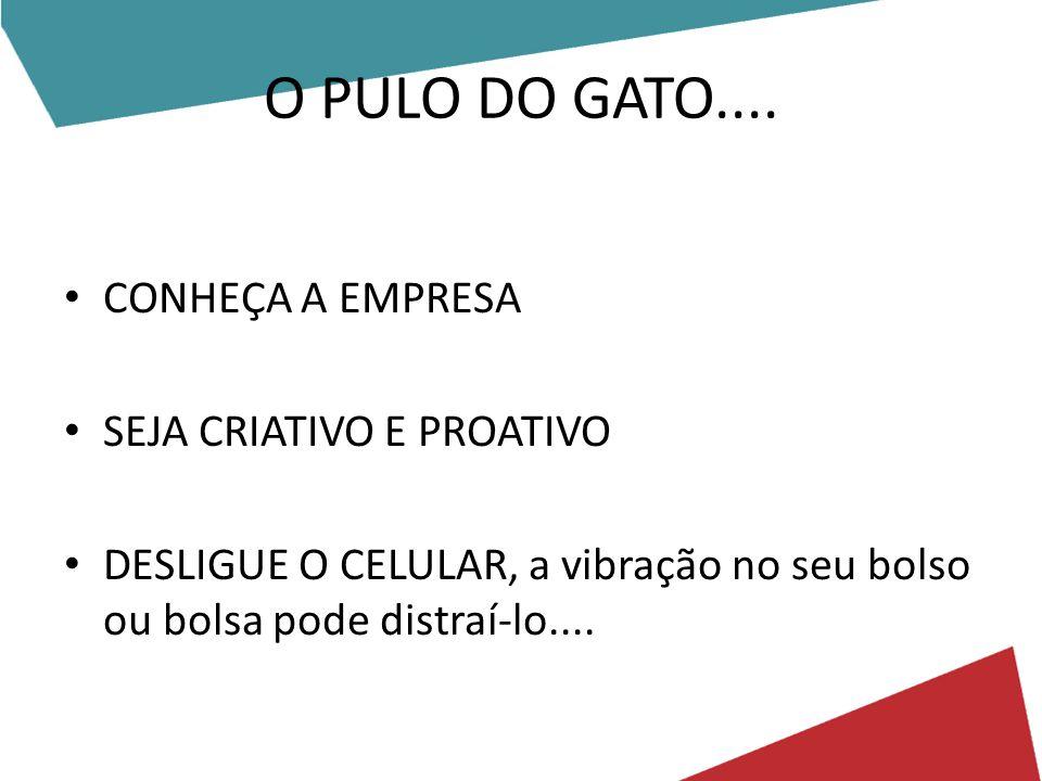 O PULO DO GATO....