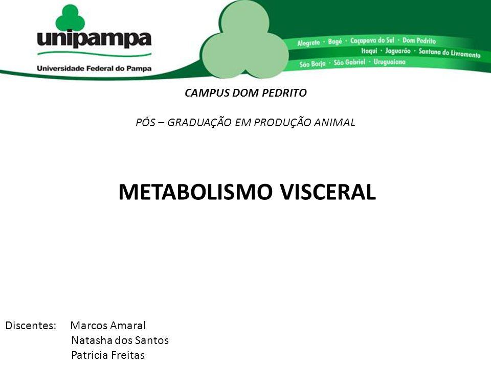 METABOLISMO VISCERAL CAMPUS DOM PEDRITO PÓS – GRADUAÇÃO EM PRODUÇÃO ANIMAL Discentes: Marcos Amaral Natasha dos Santos Patricia Freitas