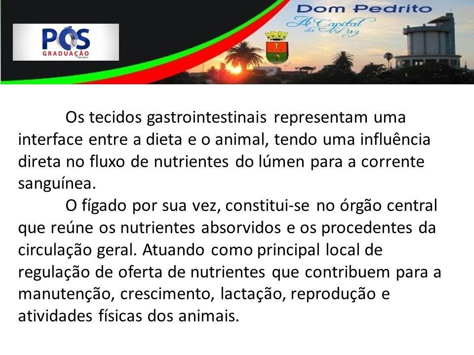 Os tecidos gastrointestinais representam uma interface entre a dieta e o animal, tendo uma influência direta no fluxo de nutrientes do lúmen para a co
