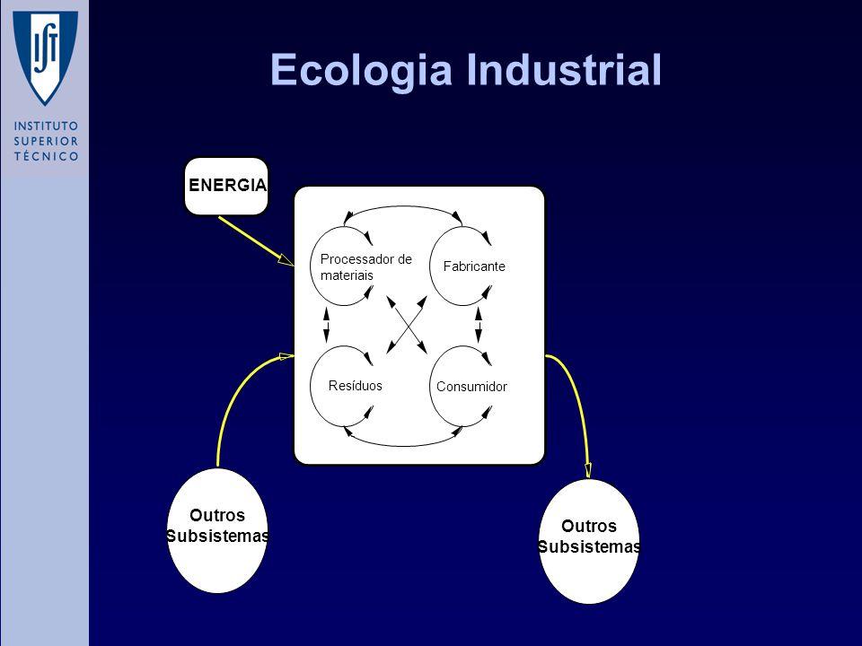 Ecologia Industrial ENERGIA Processador de materiais Fabricante Resíduos Consumidor Outros Subsistemas Outros Subsistemas