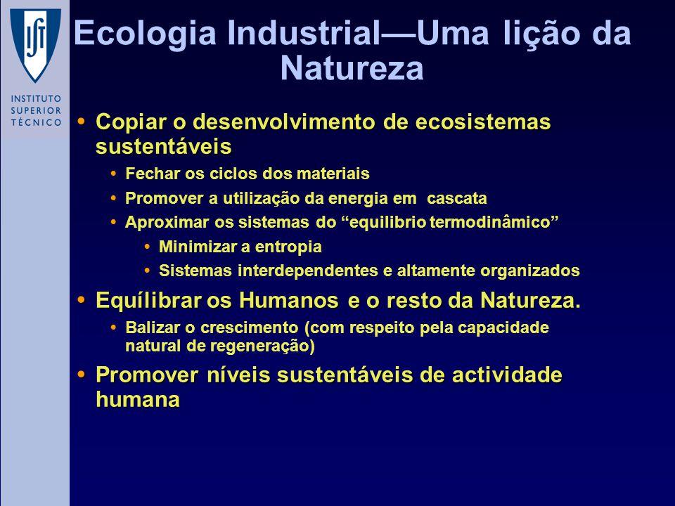 Ecologia Industrial—Uma lição da Natureza Copiar o desenvolvimento de ecosistemas sustentáveis Copiar o desenvolvimento de ecosistemas sustentáveis Fe
