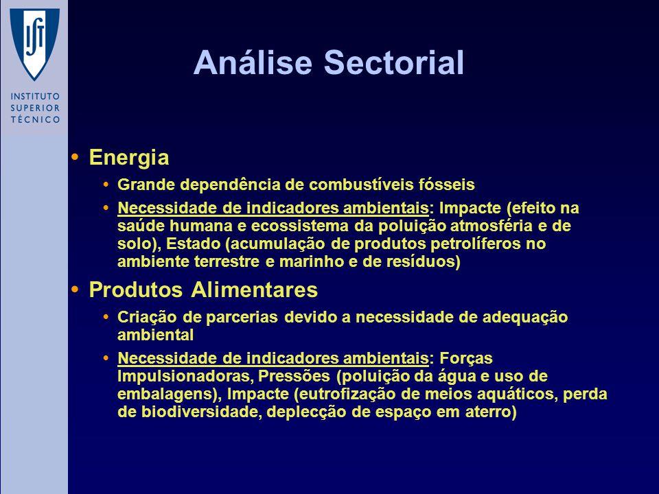 Análise Sectorial Energia Grande dependência de combustíveis fósseis Necessidade de indicadores ambientais: Impacte (efeito na saúde humana e ecossist