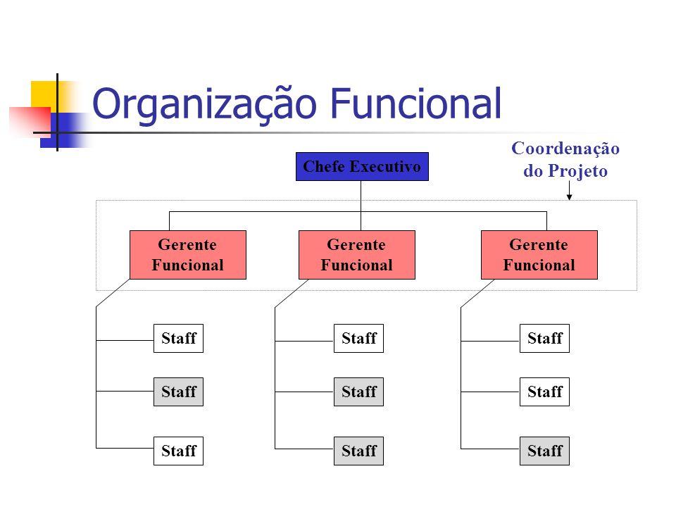 Organização Funcional Chefe Executivo Staff Gerente Funcional Staff Coordenação do Projeto