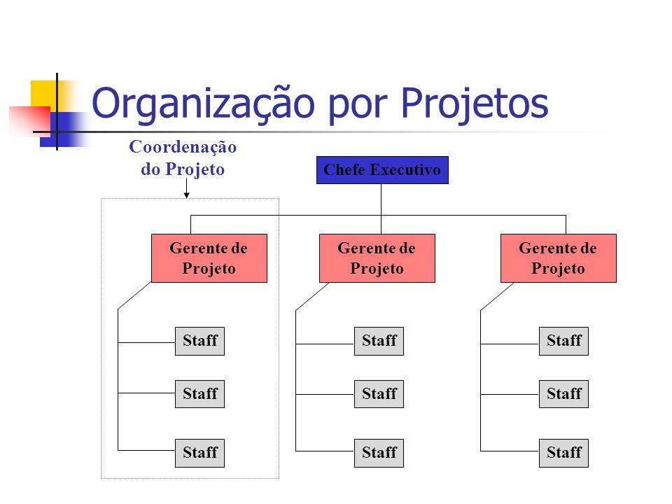 Organização por Projetos Chefe Executivo Staff Gerente de Projeto Coordenação do Projeto