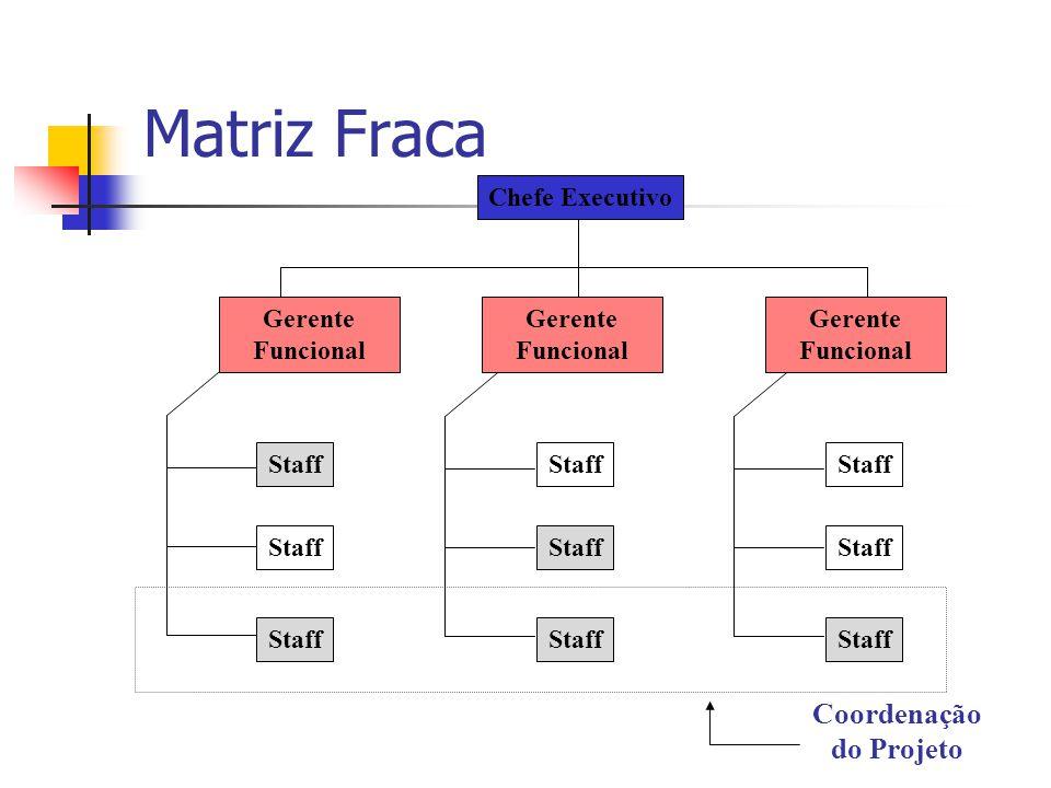 Matriz Fraca Staff Chefe Executivo Gerente Funcional Coordenação do Projeto Staff