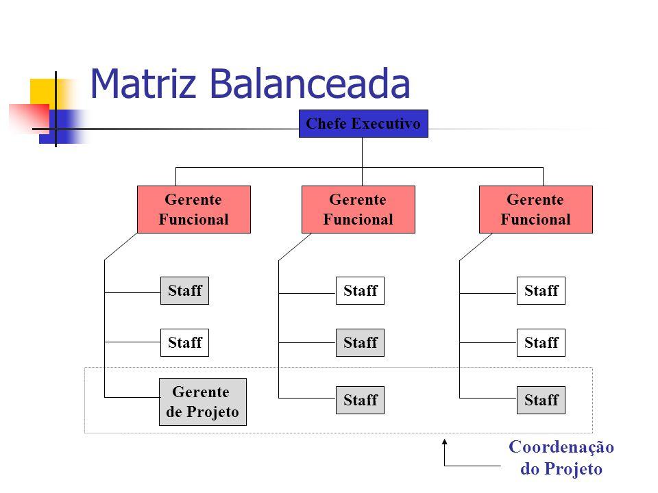 Matriz Balanceada Staff Gerente de Projeto Staff Chefe Executivo Gerente Funcional Coordenação do Projeto