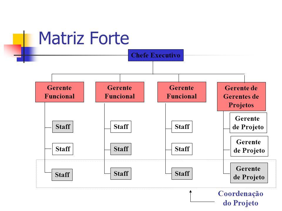 Matriz Forte Staff Chefe Executivo Gerente Funcional Coordenação do Projeto Gerente de Gerentes de Projetos Gerente de Projeto Gerente de Projeto Gere