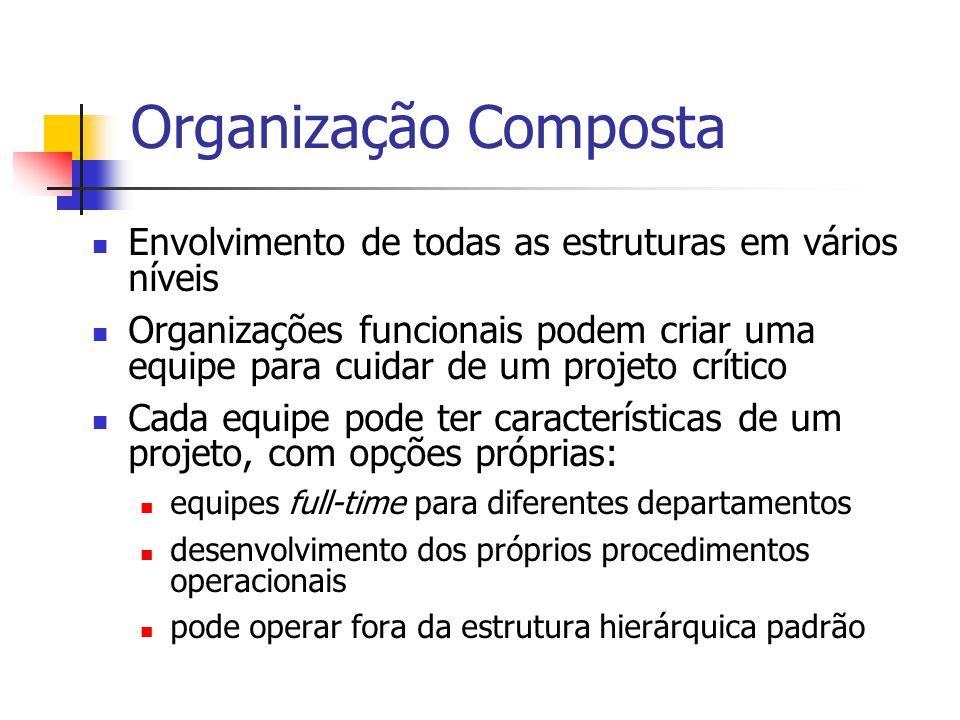 Organização Composta Envolvimento de todas as estruturas em vários níveis Organizações funcionais podem criar uma equipe para cuidar de um projeto crí
