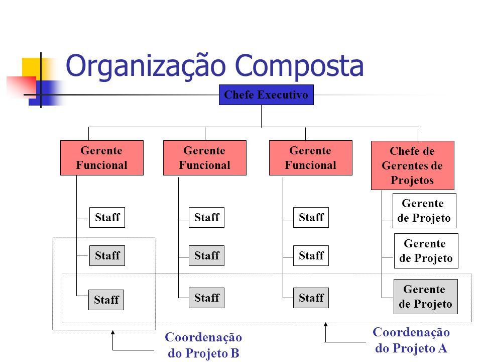 Organização Composta Staff Chefe Executivo Gerente Funcional Coordenação do Projeto A Chefe de Gerentes de Projetos Gerente de Projeto Gerente de Projeto Gerente de Projeto Staff Coordenação do Projeto B