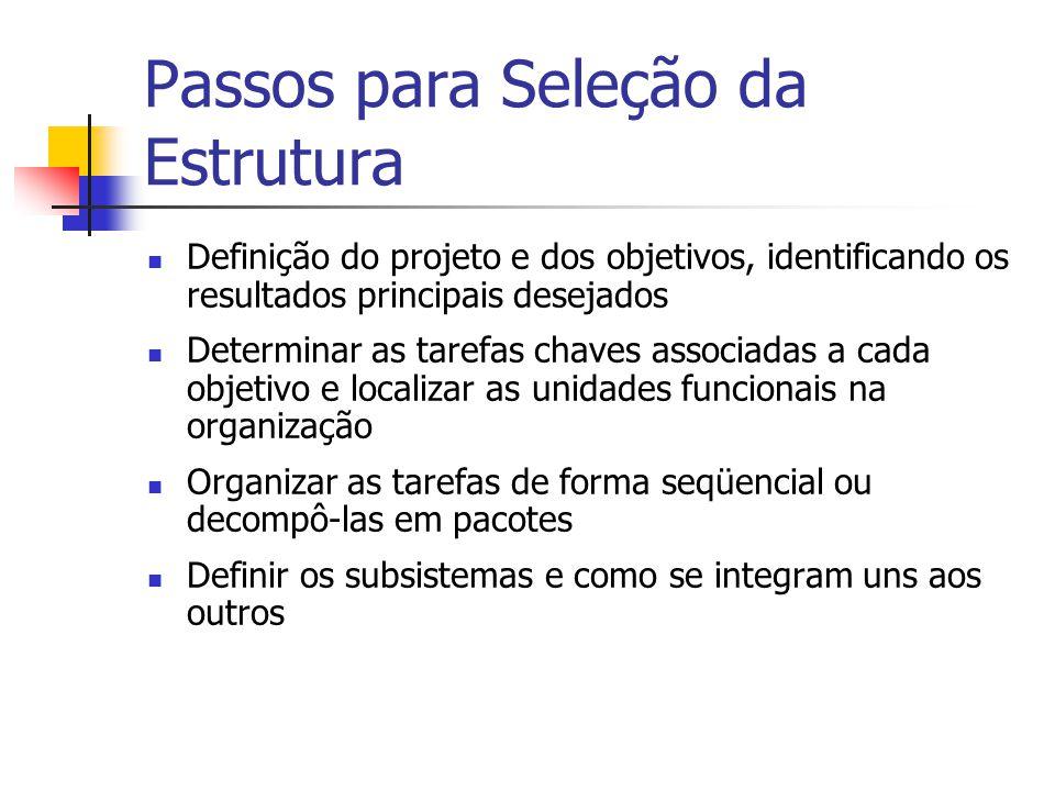 Passos para Seleção da Estrutura Definição do projeto e dos objetivos, identificando os resultados principais desejados Determinar as tarefas chaves a