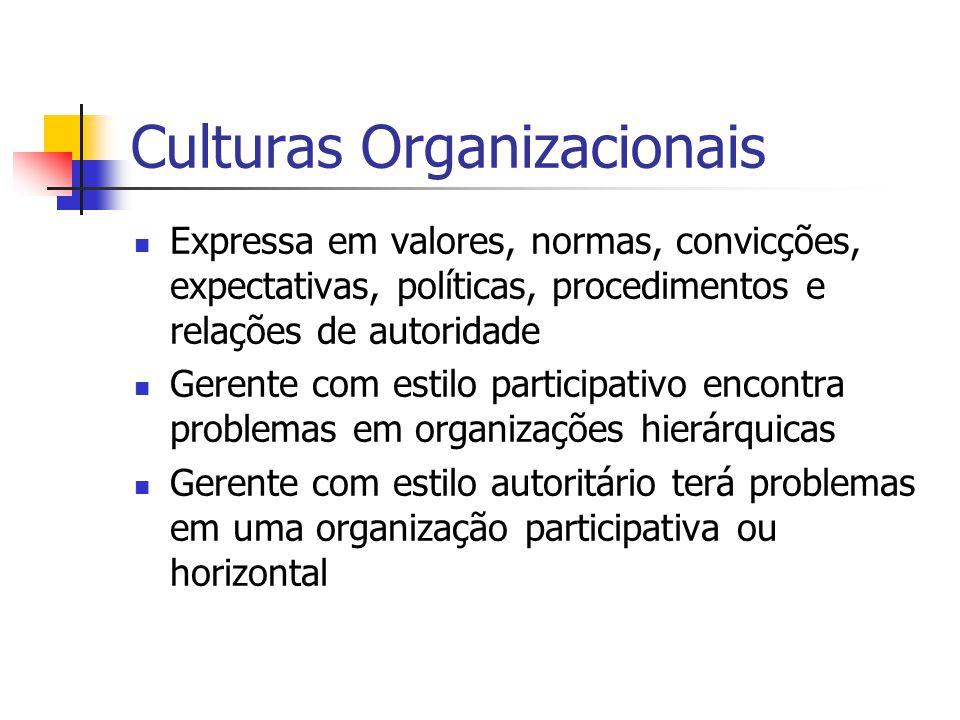 Culturas Organizacionais Expressa em valores, normas, convicções, expectativas, políticas, procedimentos e relações de autoridade Gerente com estilo participativo encontra problemas em organizações hierárquicas Gerente com estilo autoritário terá problemas em uma organização participativa ou horizontal