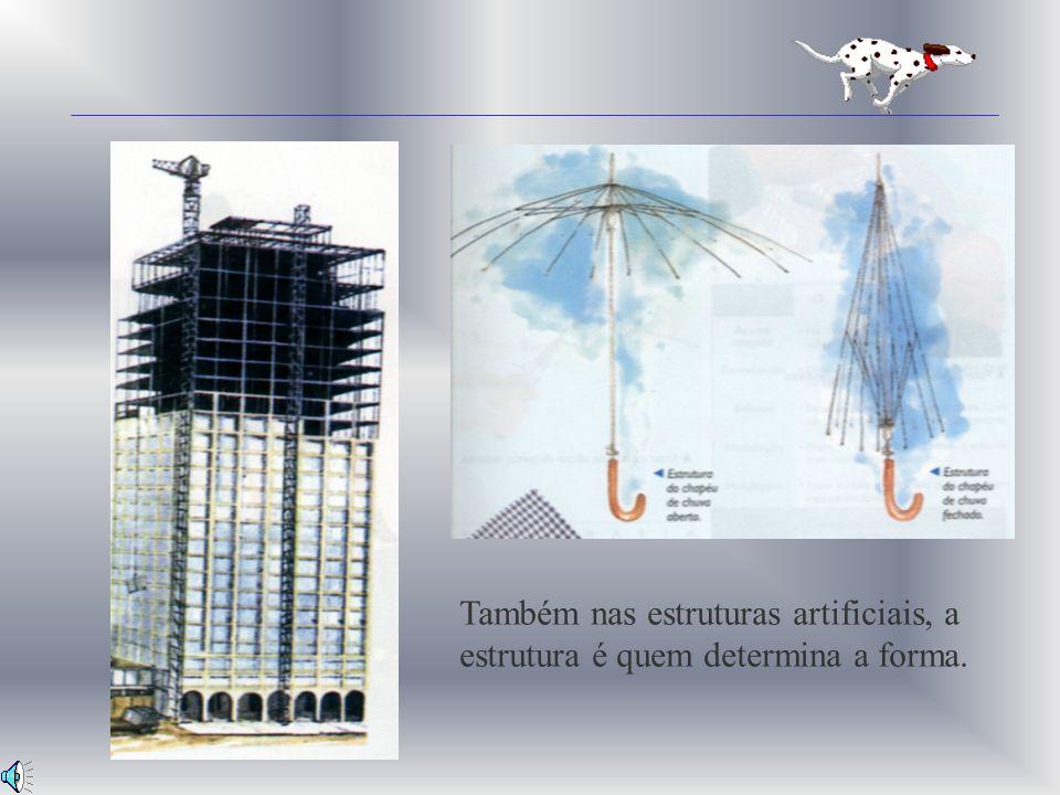 Estruturas Artificiais As estruturas artificiais são as criados pelo homem.