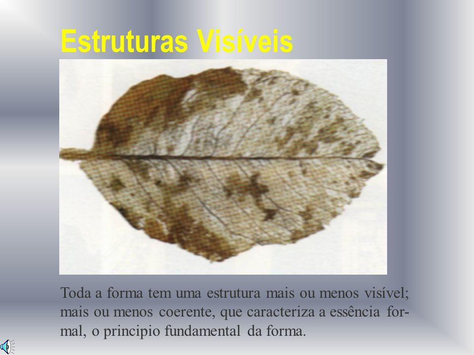 Também nas estruturas artificiais, a estrutura é quem determina a forma.