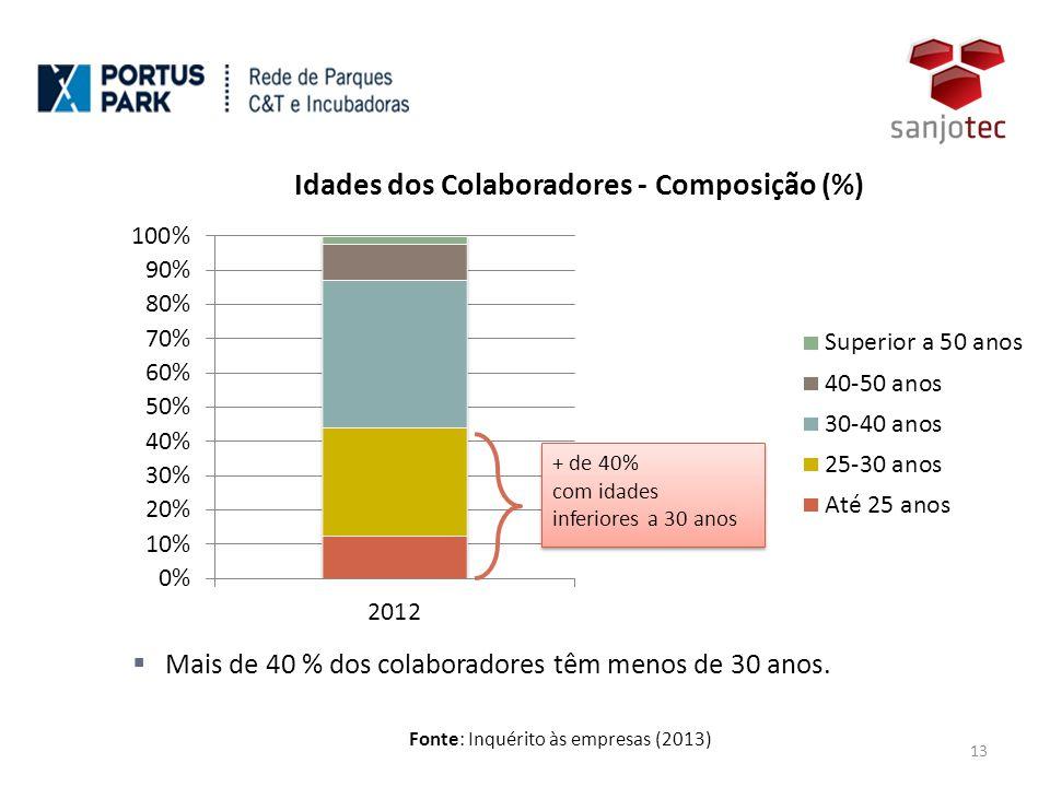 Fonte: Inquérito às empresas (2013) 13  Mais de 40 % dos colaboradores têm menos de 30 anos.