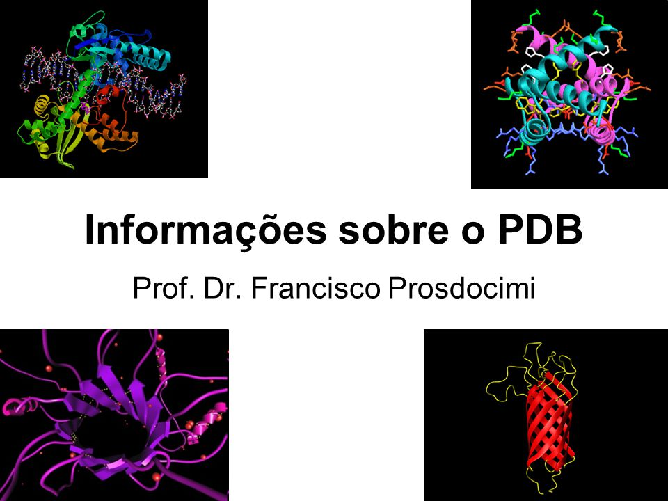 Informações sobre o PDB Prof. Dr. Francisco Prosdocimi