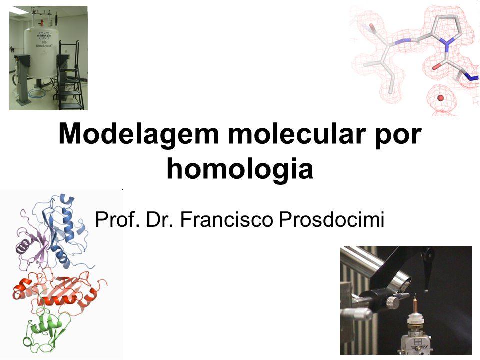 Modelagem molecular por homologia Prof. Dr. Francisco Prosdocimi