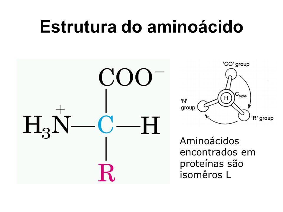 Estrutura do aminoácido Aminoácidos encontrados em proteínas são isomêros L